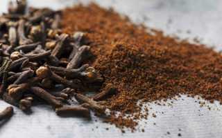 Користь і шкода гвоздики — як застосовувати настойку, сухі зерна, відео