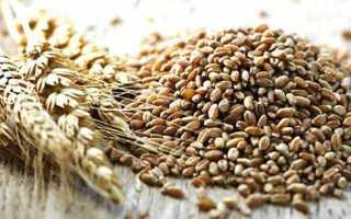 Як варити пшеничну кашу на молоці в мультиварці, користь і шкода, відео