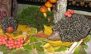 Ідеї осінніх виробів з природних матеріалів — використовуємо листя, ягоди, шишки, фото, відео