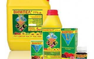 Регулятор росту рослин Вимпел — як застосовувати, опис, відео