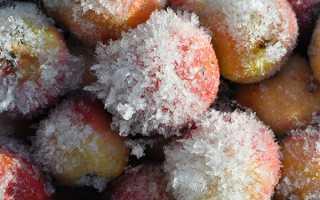 Замороження яблук на зиму, що готувати з заморожених яблук, відео