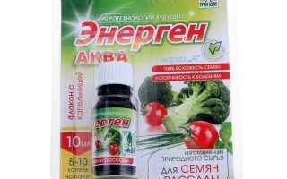 Добриво «Енергія» для прискореного росту рослин [інструкція, відгуки]