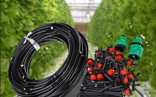 Система крапельного поливу з Китаю — складові системи, ціна, відео