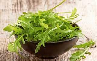 Користь і шкода салату рукола для жінок, чоловіків, алергія, відео