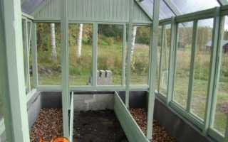 Обробка теплиць від хвороб і шкідників навесні. підготовка ґрунту