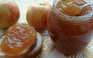 Повидло з яблук в домашніх умовах — рецепти приготування в мультиварці, через м'ясорубку, в духовці, відео
