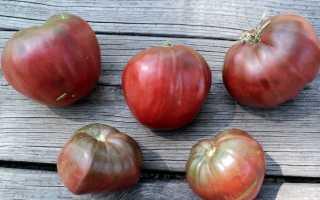 Томат Чорне серце Бреда: опис сорту, нюанси вирощування плодів