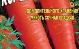 Морква Королева осені: опис сорту, правила вирощування