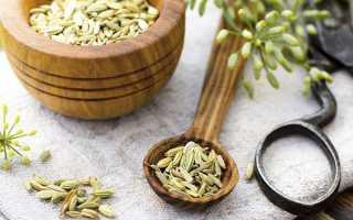 Корисні властивості трави фенхель, застосування в медицині, відео