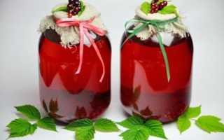 Компот із червоної смородини на зиму — рецепти з додаванням яблук, апельсина, м'яти, відео