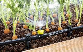 Автоматичний полив грядки — як встановити систему поливу, відео
