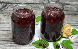 Вишня у власному соку на зиму — рецепти консервації ягід у власному соку, з кісточками і без кісточок, відео
