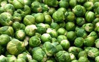 Брюссельська капуста. Догляд, вирощування, розмноження. Урожай. Користь. Фото.
