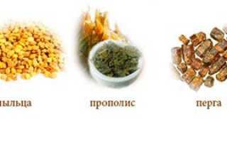 Продукти бджільництва та їх використання людиною, природний лікар мед, лікування, відео