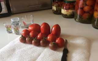 Помідори в желатині рецепти на зиму покроково з фото