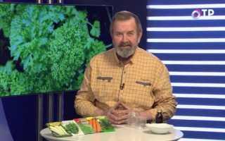 Як правильно підготувати насіння до посіву? Відео