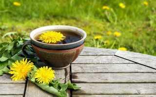 Чай з кульбаб — користь і шкода, рецепт приготування, відео