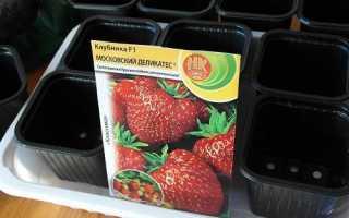 Як посіяти насіння полуниці і доглядати за розсадою, відео