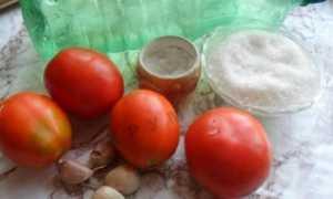 Кращі рецепти помідорів під снігом з часником на зиму з фото крок за кроком
