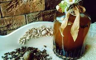 Підмор бджіл — як використовувати настоянку на горілці, лікувальні властивості та застосування спиртової настоянки, відео