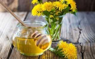 Мед з кульбаб — рецепти приготування в домашніх умовах, відео