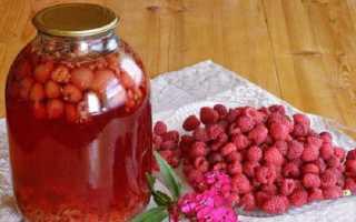 Компот з малини на зиму — рецепти без стерилізації, з додаванням яблук, смородини, апельсина, відео