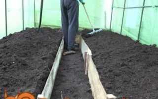 Вирощування помідор в теплиці з полікарбонату