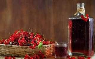 Вино з смородини — рецепт приготування в домашніх умовах, відео