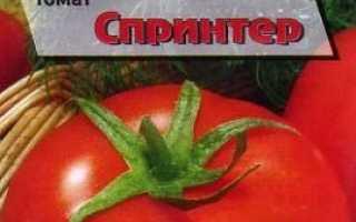 Кращі сорти помідорів 2020: відгуки, фото і опис для відкритого грунту і теплиці