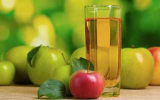 Сік з яблук на зиму — рецепти приготування напою через соковижималку з м'якоттю і без, відео