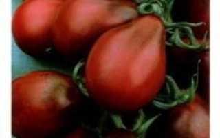 Томат Груша чорна: характеристика і опис сорту, рекомендації по вирощуванню