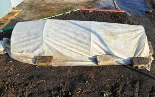 Вирощування розсади у відкритому грунті під плівкою, відео