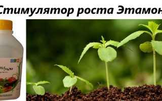 Регулятор росту Етамон — інструкція із застосування, відео