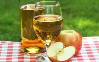 Вино з яблучного соку, як зробити напій в домашніх умовах, прості рецепти домашнього вина, відео