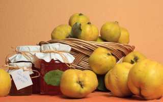 Варення з японської айви — найсмачніший рецепт з яблуками, лимоном, часточками, відео