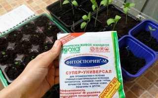 Фітоспорін препарат для рослин. Опис, особливості та застосування Фітоспорін