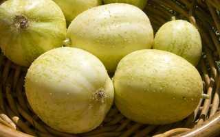 Огірок-лимон (кришталеве яблуко) — особливості рослини, відео