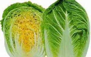 Як правильно виростити пекінську капусту у відкритому грунті, теплиці