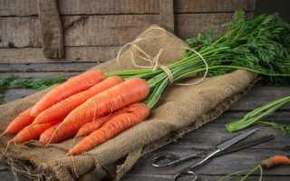 Як зберігати моркву взимку: де і при якій температурі, способи, строки та умови