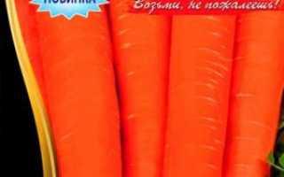 Червона морква: опис популярних сортів, рекомендації по вирощуванню